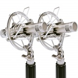 WA-84-Stereo-Pair-Nickel